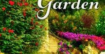 Book #6 Death in an English Garden / Ideas and inspiration for the sixth book in the Murder on Location series.
