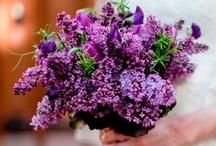 Floral Arrangements and designs