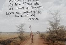 Favorite Places & Spaces / by Colleen Lela - Desire a Wild Life