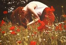 ┊Rood┊ / schroomvol ruisende rode gewaden als herfstige wingerdbladen