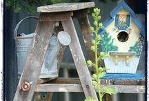 Ladders / by Judy ♥ daily yarns