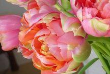 Fabulous Flowers / by Cristin Geimer