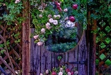 Beautiful Gardens / Help us share and enjoy images of beautiful gardens.