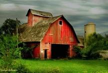 For the love of barns! <3 / by Jesika Anglin Neace Aardema