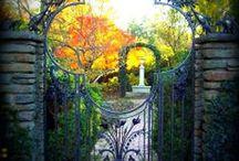 Gardening  / by Shnella Burke