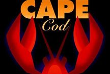 *CAPE COD / ALL ABOUT OLD CAPE COD... / by Judi Madden