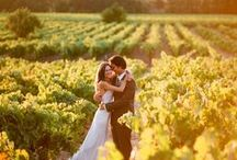Wine Country Weddings / A collection of inspiring wine country wedding ideas, decor and venues. Including some of our favorite wineries. / by The California Wine Club