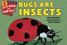All About Bugs! / A roundup of all our books featuring insects! / by HarperCollins Children's