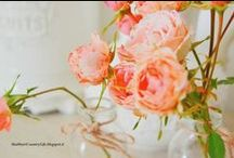 Shabby&CountryLife /  home, interior design passion, home cooking & baking.