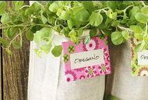 Crafts & Gardening