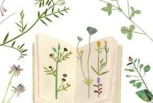 Floral illustration / Botanical prints, hand made watercolors, flowers and love!