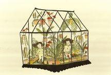 Illustration in the Garden