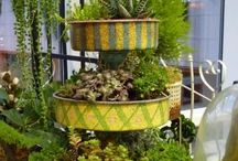 how does ur GARDEN grow? / Gardening in pots and in the yard, loads of stunning ideas. / by Artsy Fartsy