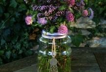 Jars made new again! / by Sheila Ball