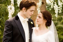 Twilight for Twihards / Vamps and wolves, oh my!