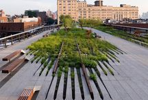 LANDSCAPE ARCHITECTURE / Landscape Architecture Gardens Paving Plants Trees Landscapes