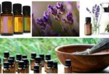 PraiseWorks Essential Oils For Your Mind, Body and Spirit / Wonderful information about using essential oils to improve your overall mind,body, and spirit wellness  / by PraiseWorks Health and Wellness