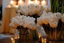 TABLESCAPES / by ARLENE STONE |