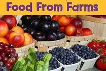 Children's Books Farm to Table / Farm to table... children's books provide so much information for kids in the classroom!