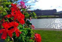 #VISITSAVERNE / Vous êtes passés à Saverne ? Vous avez été charmé ? Partagez vos plus beaux moments dans notre petite cité des Rohan ! #visitsaverne www.tourisme-saverne.fr