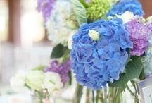 Wedding Inspiration! / by Ruth Ladner