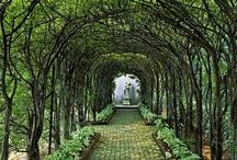 Garden ~ Structures