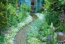 Garden ~ Small Spaces