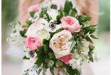 weddings / Weddings shot by Kat Willson Photography