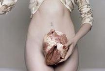 Corazón // Heart // Cœur // coração // 心脏 // Herz // दिल // 心