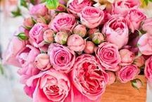 Just Pink / Pink is my fav color!  Just a little inspiration to fill your pretty boards with!