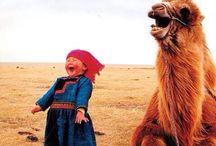 •••LAUGH••• / Adventures