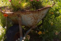 Garden, Yard, and Potting Shed Ideas / by Danna Standridge