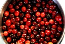 Cranberry Everything  / by Judith Ryder