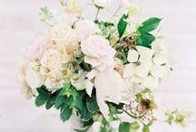 Florals / by Ivana Matsuba