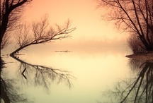 ♫Peacefulness ♫ Tranquility ♫ Spirituality ♫ Contemplate ♫ Dream ♫ Reflect♫