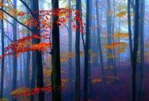 FOUR SEASONS: Autumn / Reap ~ Harvest