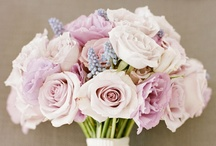 Beautiful Bouquets / Best for Bride has gathered together our favorite bouquets.  Hopefully you can find your beautiful bouquet filled with springtime blooms, pretty pastels, or brighter blooms.