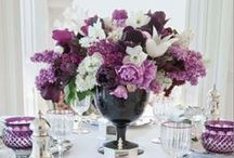Purple Palette / Radiant Orchid is the 2014 Pantone Colour of the Year - Purple Wedding Ideas from Best for Bride, The Best Bridal Stores | www.bestforbride.com
