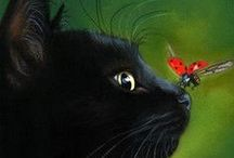 C o c c i n e l l e / Ladybugs bring luck