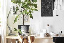 Photography studio / Vision board for my dream studio