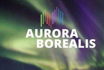 Aurora Borealis / Tableau d'inspiration des aurores boréales #AURORA #AURORE #NORTHERNLIGHTS #BOREALIS ★ LIEN ★ http://www.bien-voyager.com/conseils-photos-capturer-aurores-boreales-svalbard/