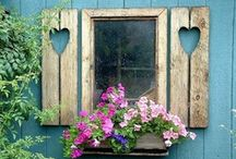 Windows & Wooden Shutters  / by tami lahis