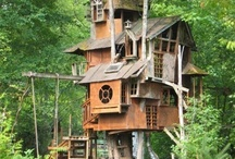 Treehouses / We love tree houses and both being only 5ft 4 we like to feel like hobbits!  / by Bubble Trump Ltd