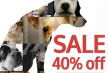 For the Men that love animals & a good sale!! / For the Men that love animals and a good sale!! Let's save animals (and you save too!) You can save animals and get a discount at the same time. Give to save an animal in need and we will give you 40% off! Every product sparks a $5 donation. / by Hendrick & Co.