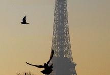 """Toujours La Tour / """"Admirada por repetidos olhares, guardada por diferentes lentes, iluminada por diversas cores, eternizada por todos os ângulos... Ela é sempre lá, grandiosa em qualquer estação!"""""""