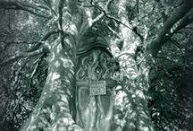 Fairyish iii