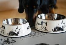 For the furry ones... / Things for and relating to the four legged loves in our lives.