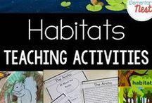 Animals & Habitats / Education