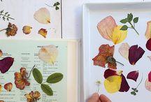 . crafty . / by Kristle Amara