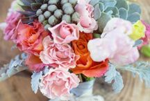 . flora . / FLOWERS.